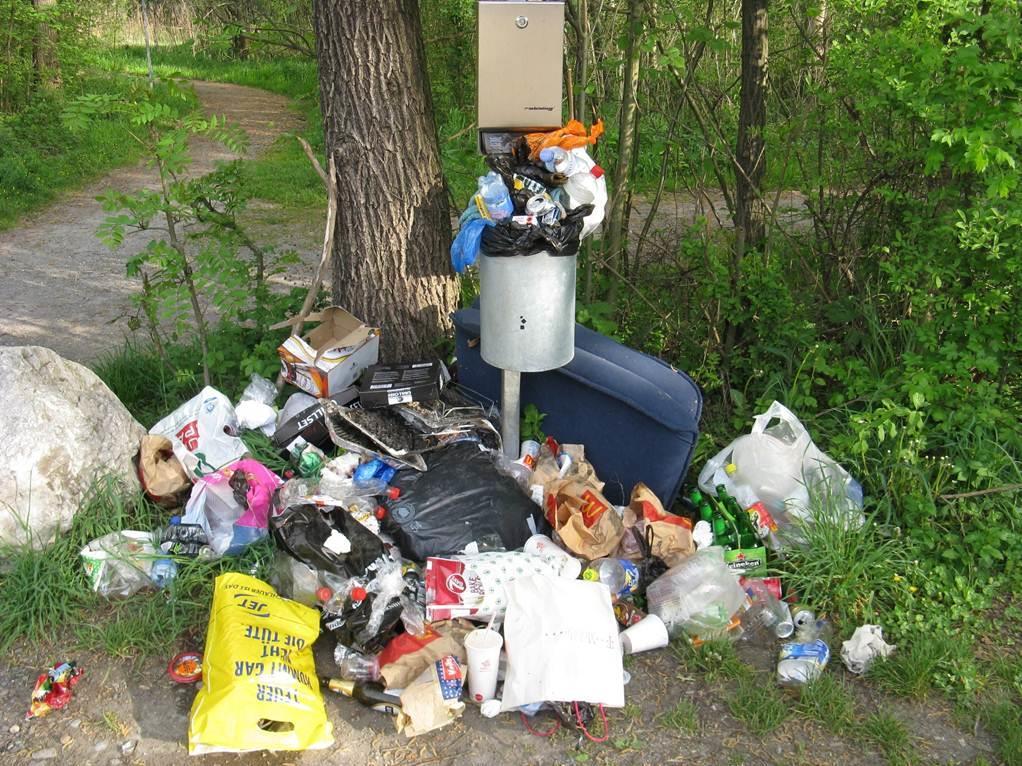 Mülldeponien sorgen für Unmut.