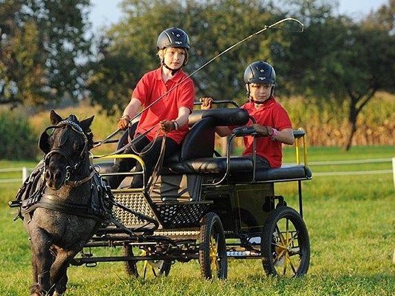 Kinder beweisen große Geschicklichkeit beim Kutschenfahren.