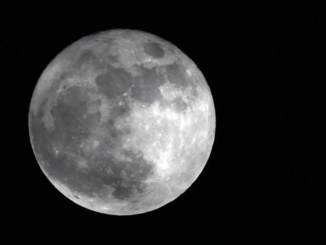 Erdtrabant wird Sonntagfrüh zum Super-Mond