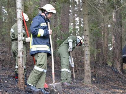 Vier Feuerwehren waren am Mittwoch wegen des Waldbrands in Kirchberg am Wechsel im Einsatz.