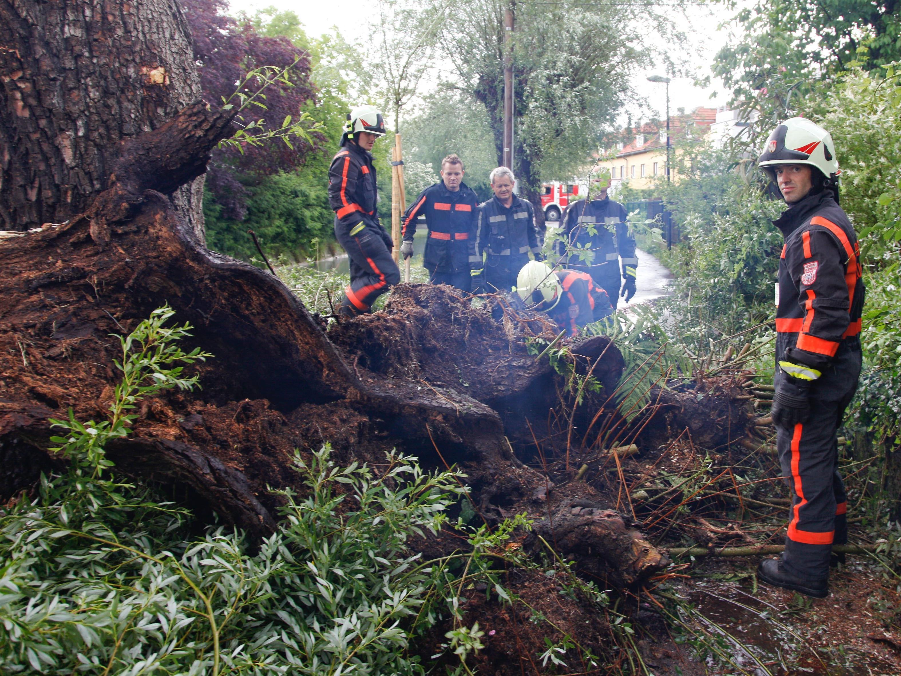 Die schweren Unwetter haben für mehrere Großeinsätze der Feuerwehren gesorgt.
