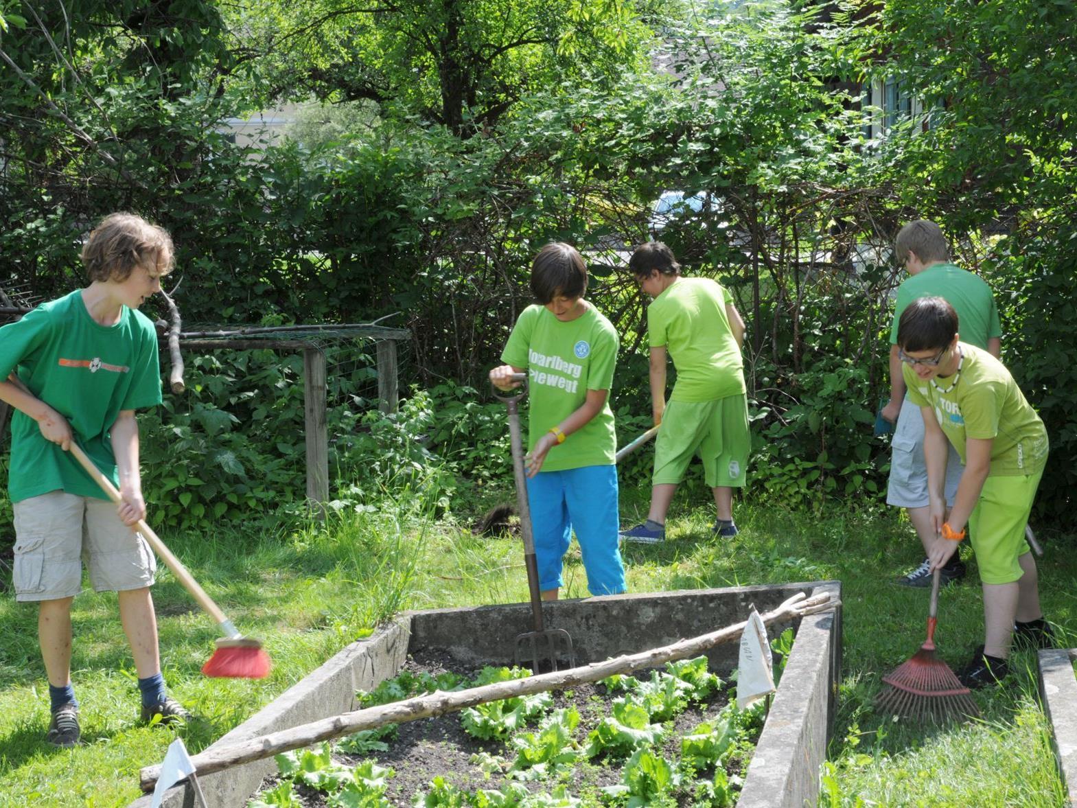 """Die Nenzinger Mittelschüler sind zwischenzeitlich Experten in Sachen """"Garten""""."""