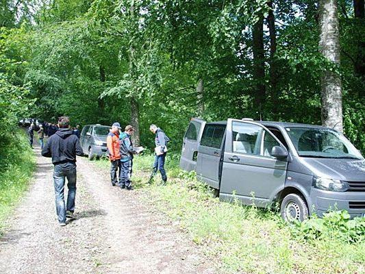 In diesem Waldstück in Ofenbach soll Heidrun W. verunglückt sein