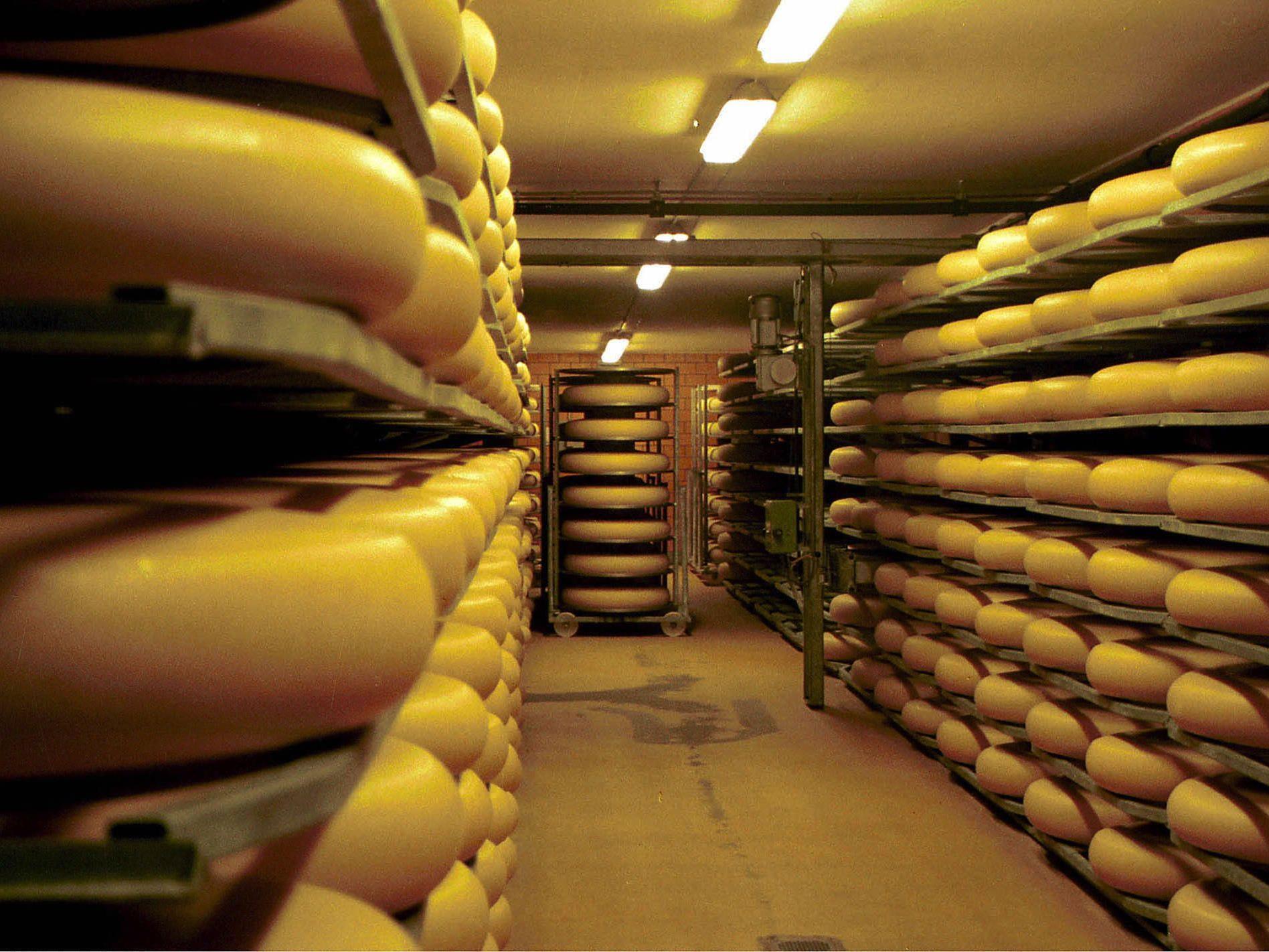 """Alles Käse: """"CheeseBomb"""" soll die Jugendlichen begeistern."""