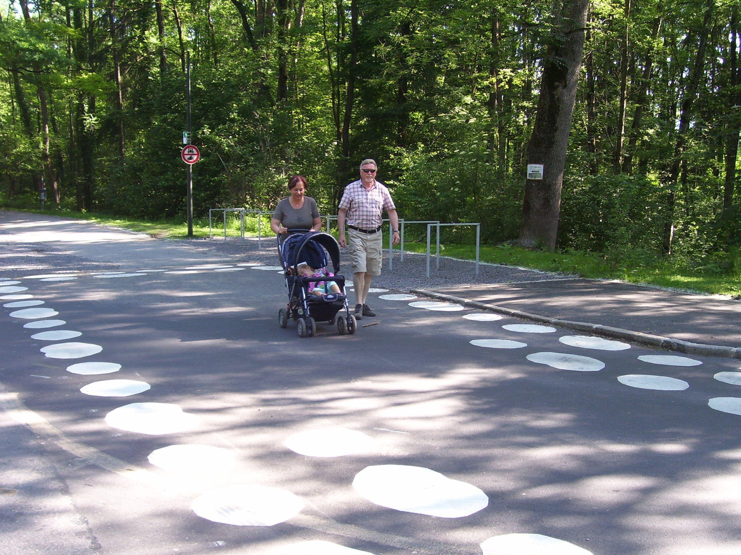 Die Markierungen beim Übergang auf der Rohrbacherstraße sorgen aktuell wieder für Diskussionsstoff im Bürgerforum.