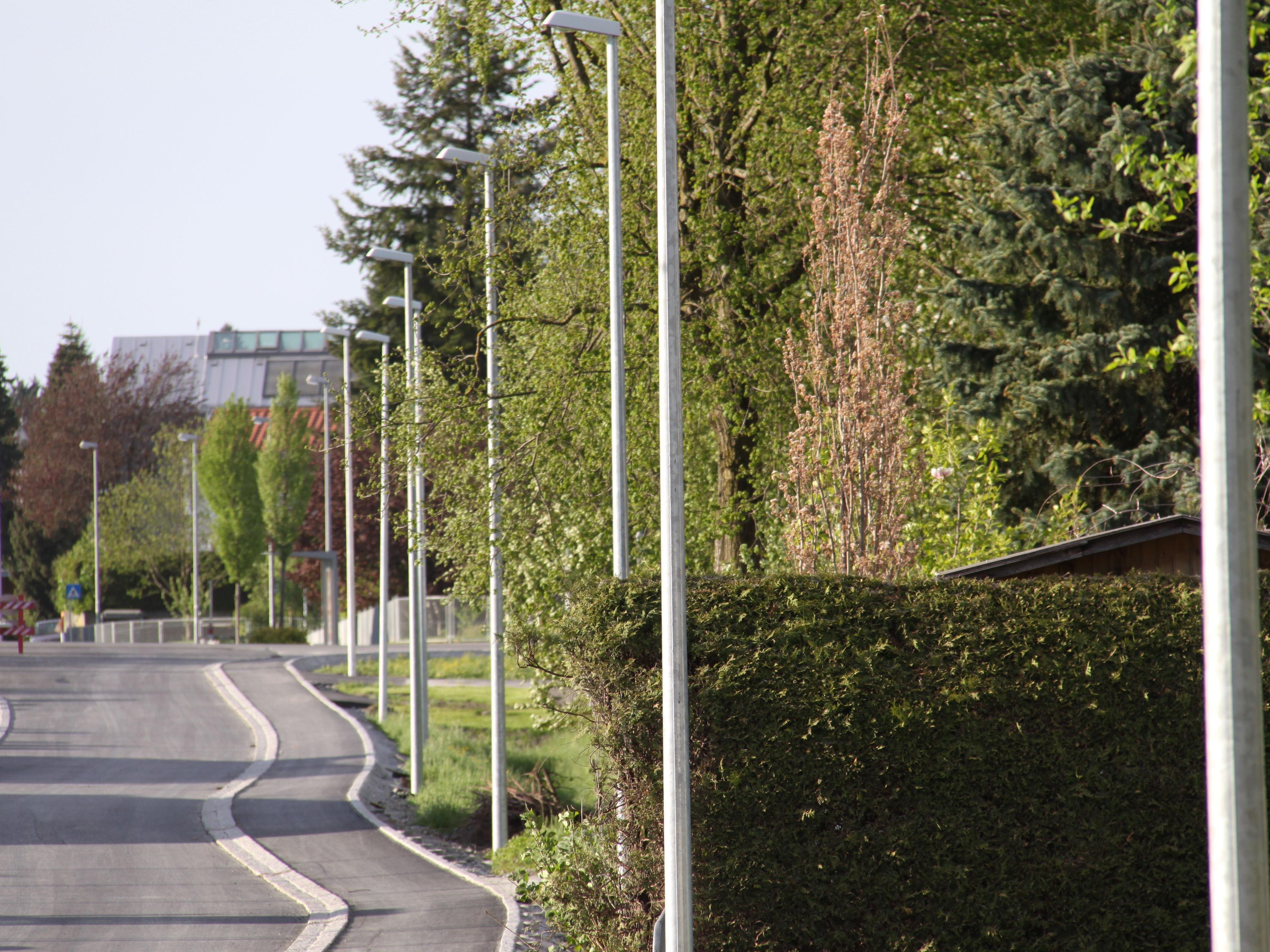 Angesichts der Vielzahl an Straßenlampen im Süden Lustenaus, bekommt das Wort Lichtermeer eine neue Bedeutung.
