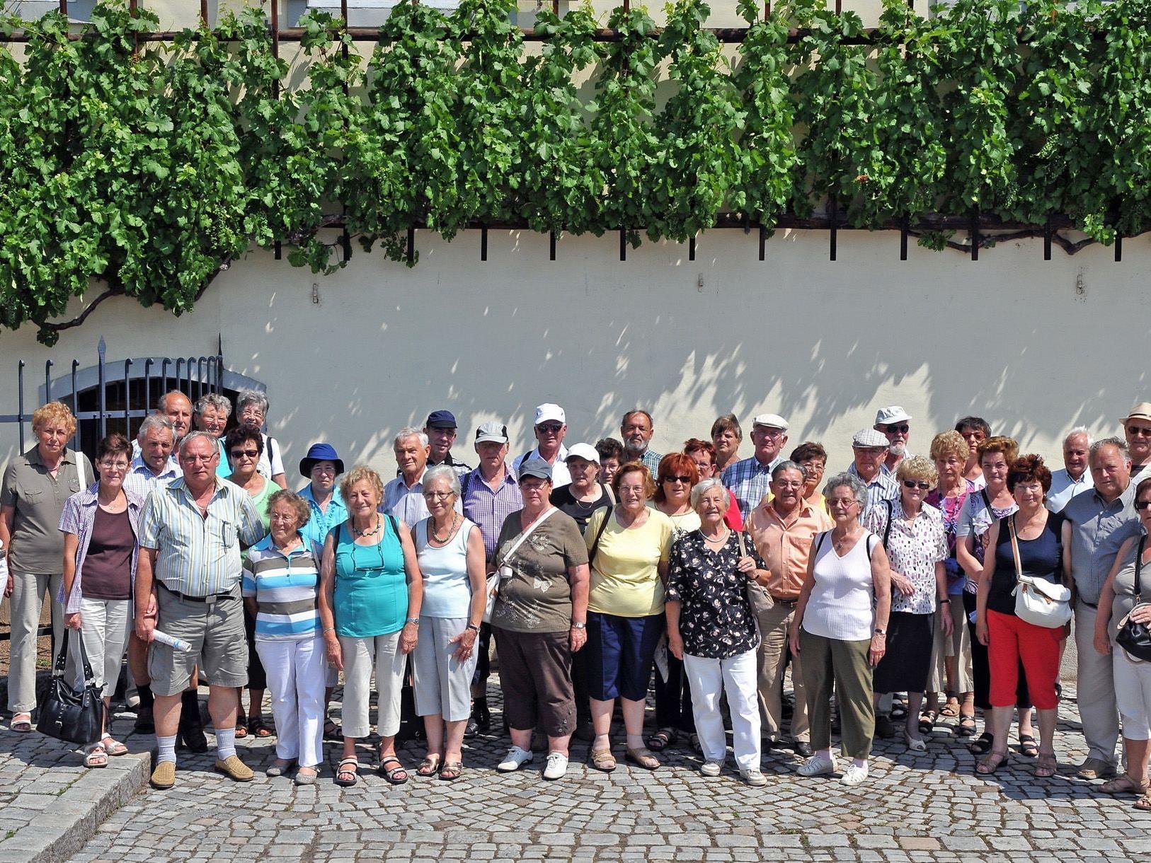 Gruppenfoto der Höchster Ausflügler vor der 400 Jahre alten Weinrebe in Maribor