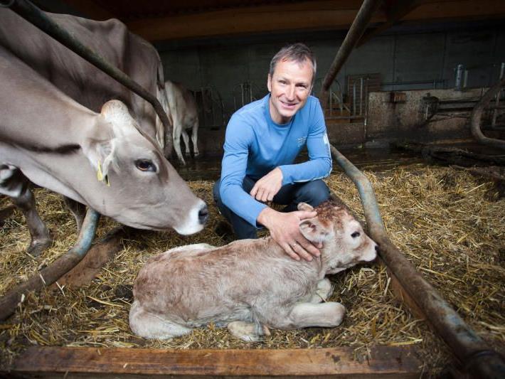 Der heutige Landwirt Hubert Strolz streichelt das neugeborene Kalb