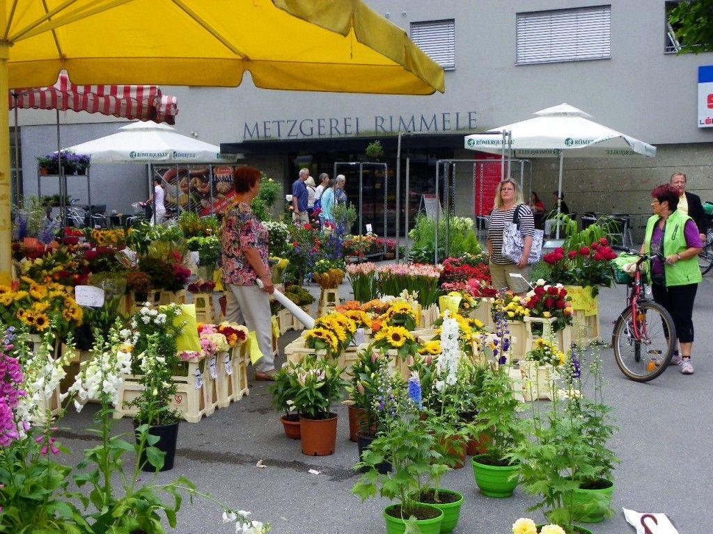 Blumenzauber am Sparkassenplatz