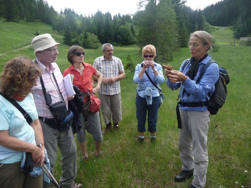 Rosemarie Zöhrer erklärt die Besonderheiten eines Hochmoores.
