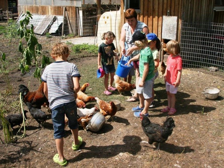 Erlebnisreicher Nachmittag auf dem Bauernhof erlebten die vielen Kinder.