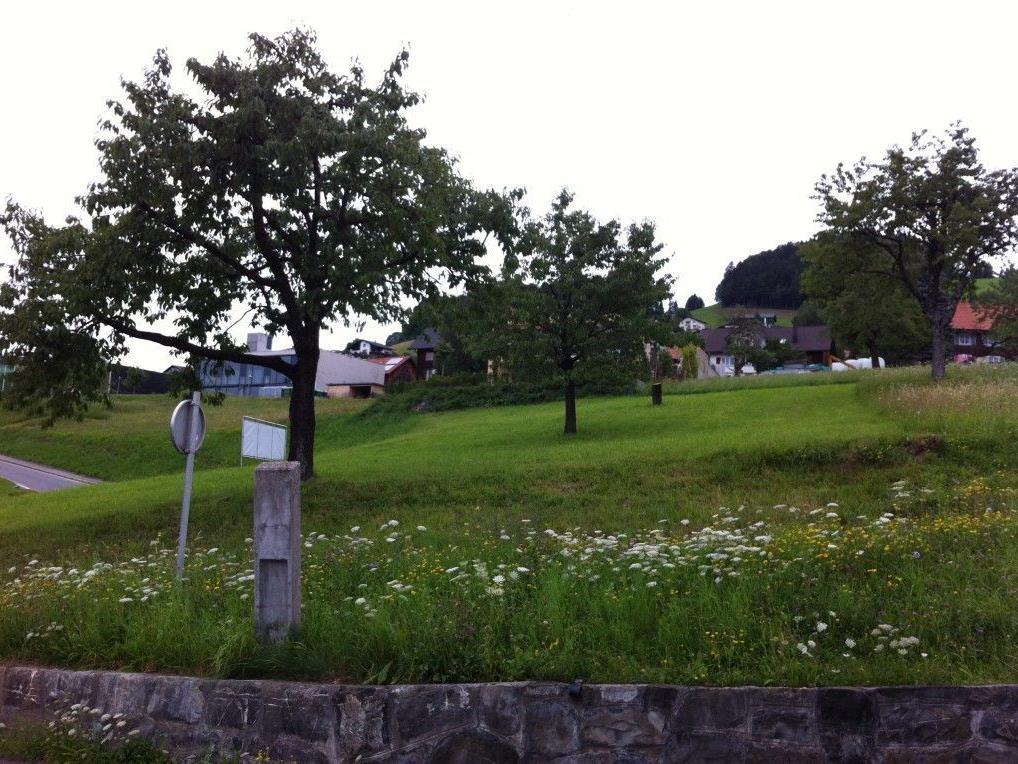 """36 Grundstücke im Ortsgebiet """"Egg"""" in Fraxern werden derzeit einem Umlegungsverfahren unterzogen."""