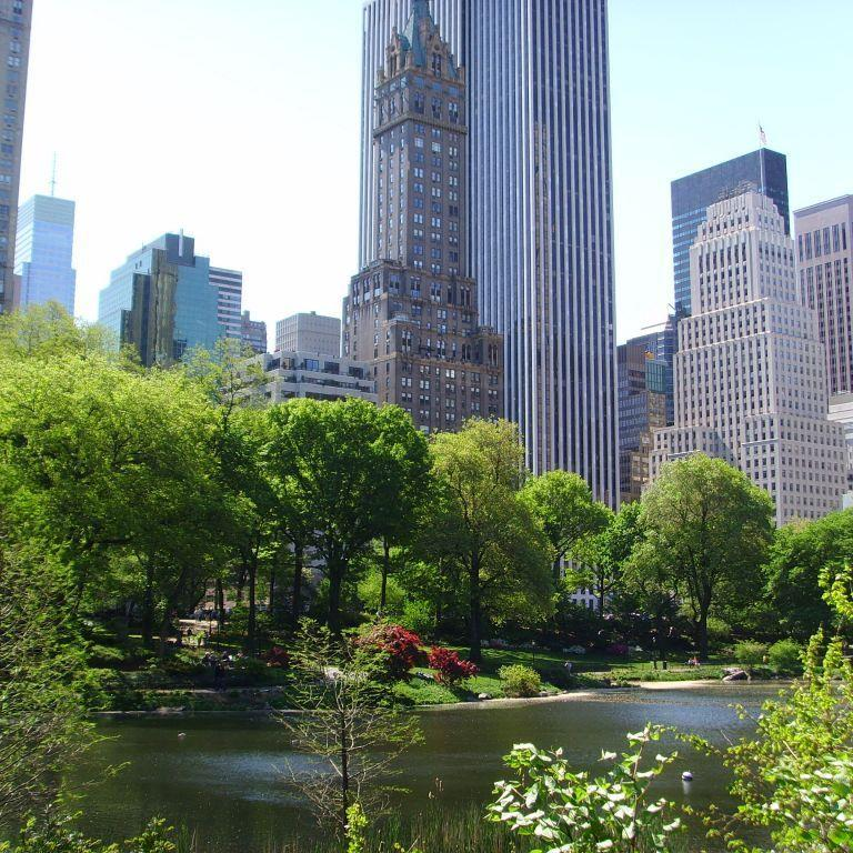 Central Park in New York.