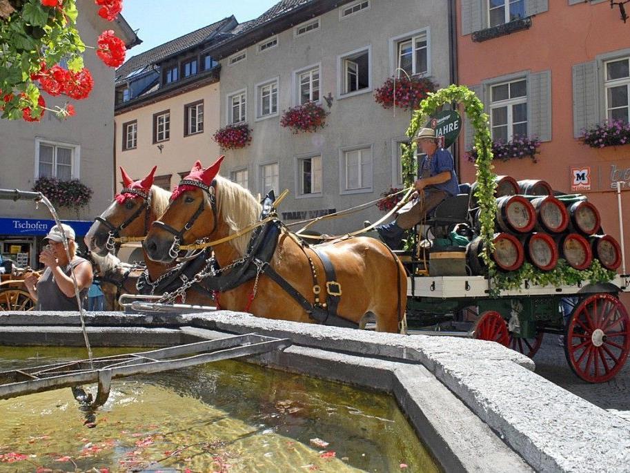Die Pferdekutschen konnten beim Nepomukbrunnen in der Bludenzer Altstadt betrachtet werden.