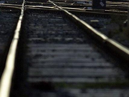 Badner Bahn: Tödlicher Unfall bei der Station SCS.