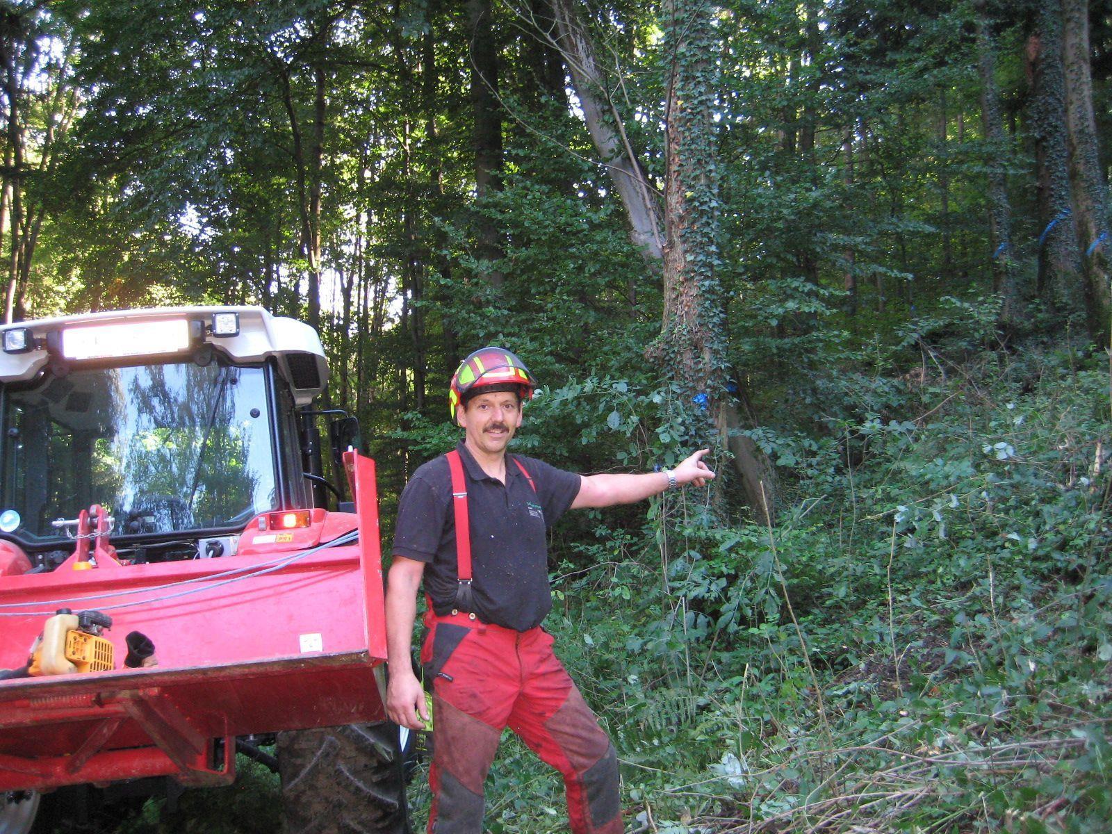 Hier beginnt der neue Forstweg, der in den kommenden beiden Monaten gebaut wird.