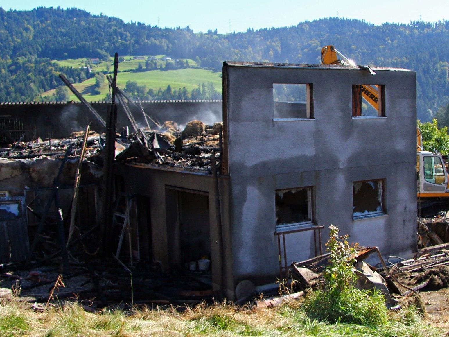 Aufräumarbeiten nach Großbrand in Bregenz-Fluh