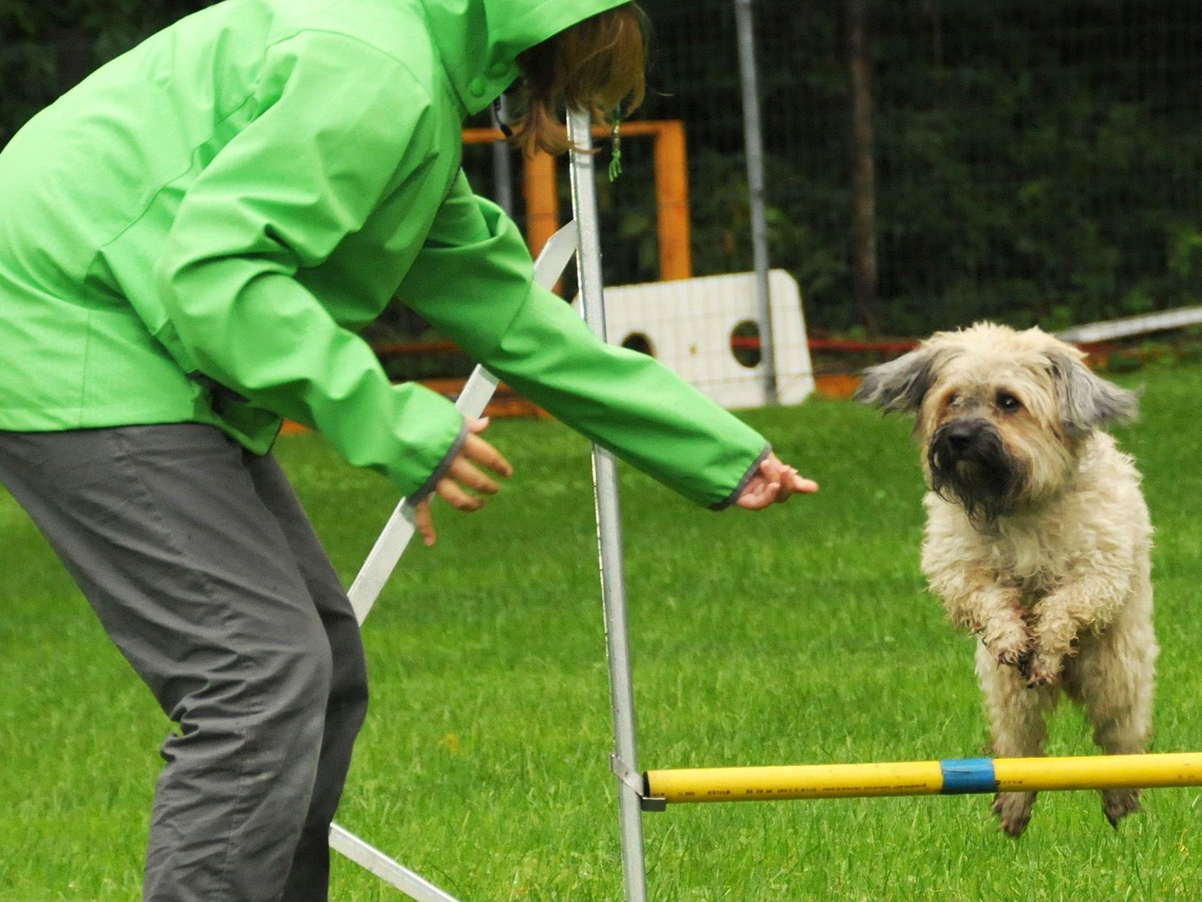 Ferienspaß Höchst: Agility-Vorführung mit Irina und Nemo beim Hundesportplatz in Höchst