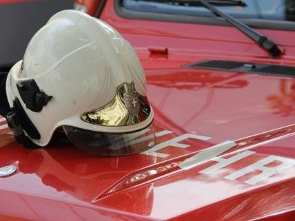 Eine groß angelegte Feuerwehrübung fand am Samstag im Bezirk Wiener Neustadt statt.