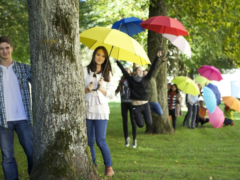 Mit 'Singin in the Rain' starten die über 100 SchülerInnen des Musikgymnasiums Feldkirch bereits in ihre zehnte Musicalsaison.