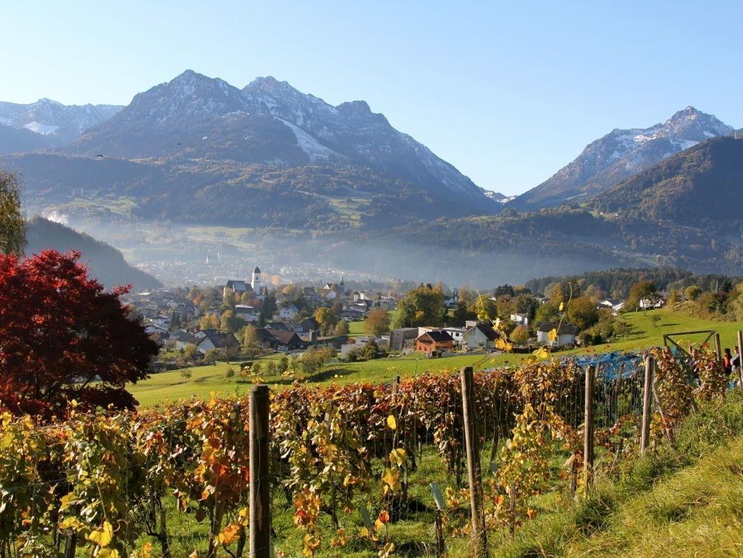 """Schon die Römer wussten die klimatischen Vorzüge des südlichen Vorarlbergs und insbesondere des Walgaus zu schätzen. Blick vom Weinberg """"Chesa Druschauna"""