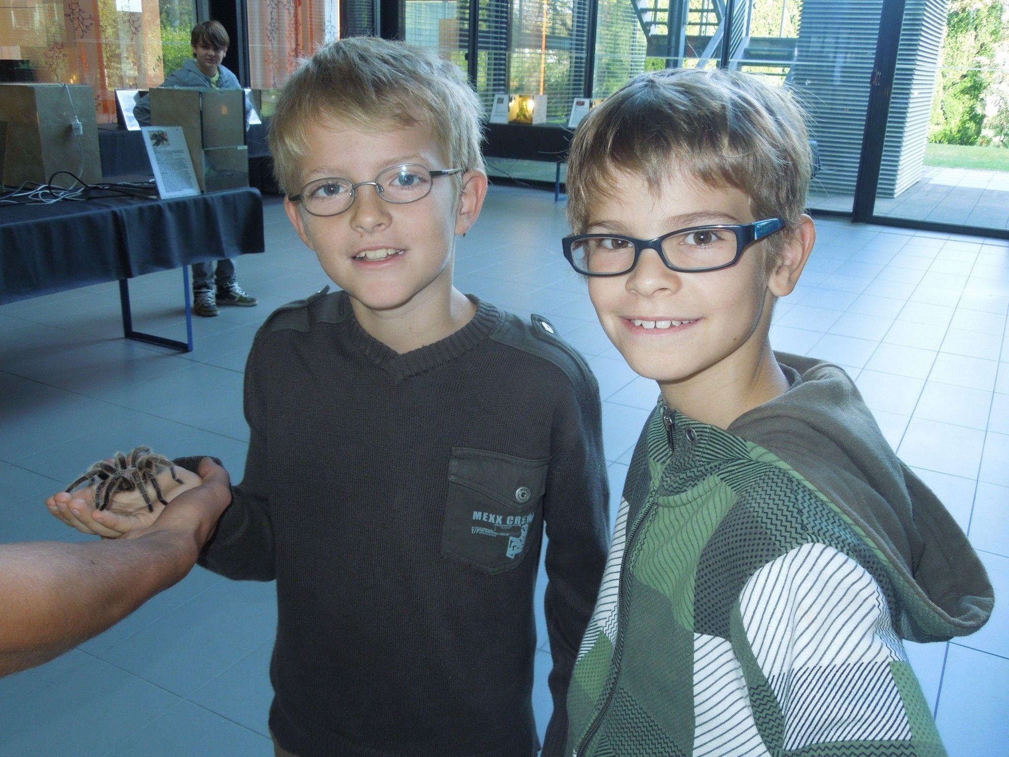 Die Kinderreporter Elijah und Dominik beim aufregenden und krabbligen Einsatz bei der Insektenausstellung in Dornbirn.