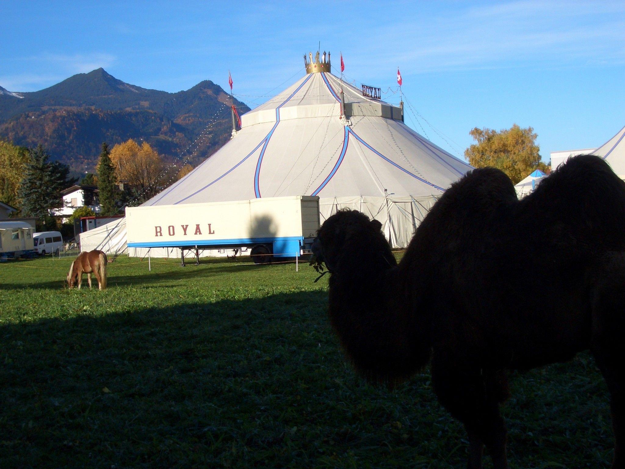 Circusluft in Bludenz