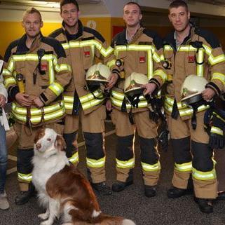 """Feuerwehr Vösendorf befreit Australian Shepherd """"Sammy"""" aus Kofferraum"""