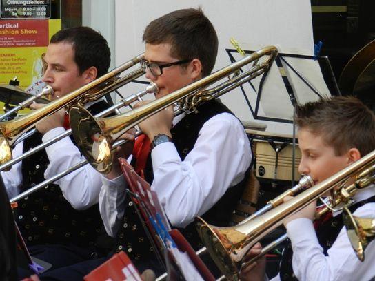 Die Stadtmusik lädt zum Cäciliakonzert
