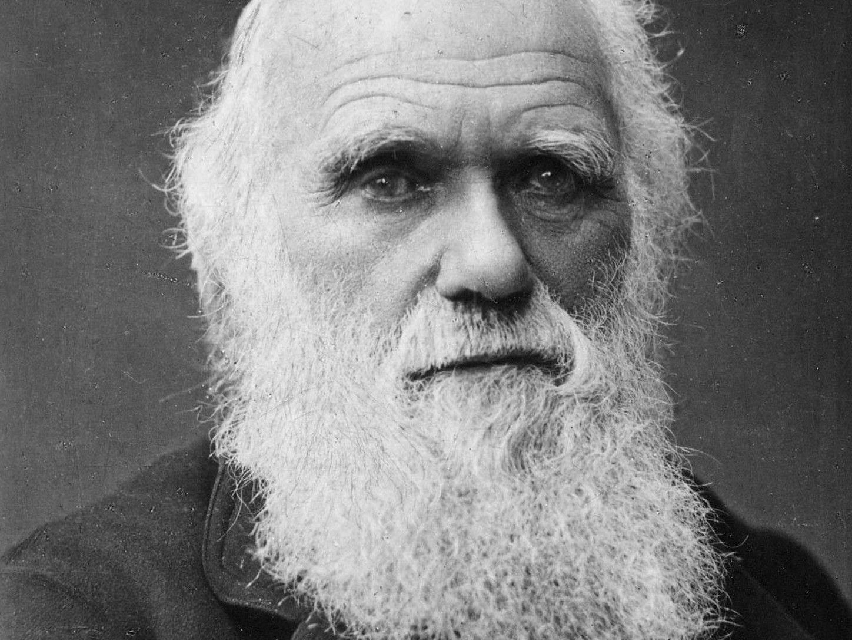 Auf Facebook zur Wahl von Charles Darwin aufgerufen.