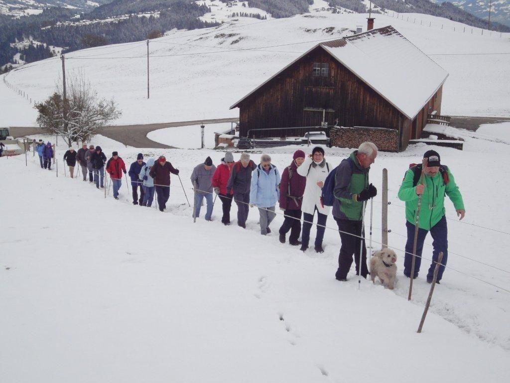Zalreiche Wanderer des PVÖ Bregenz