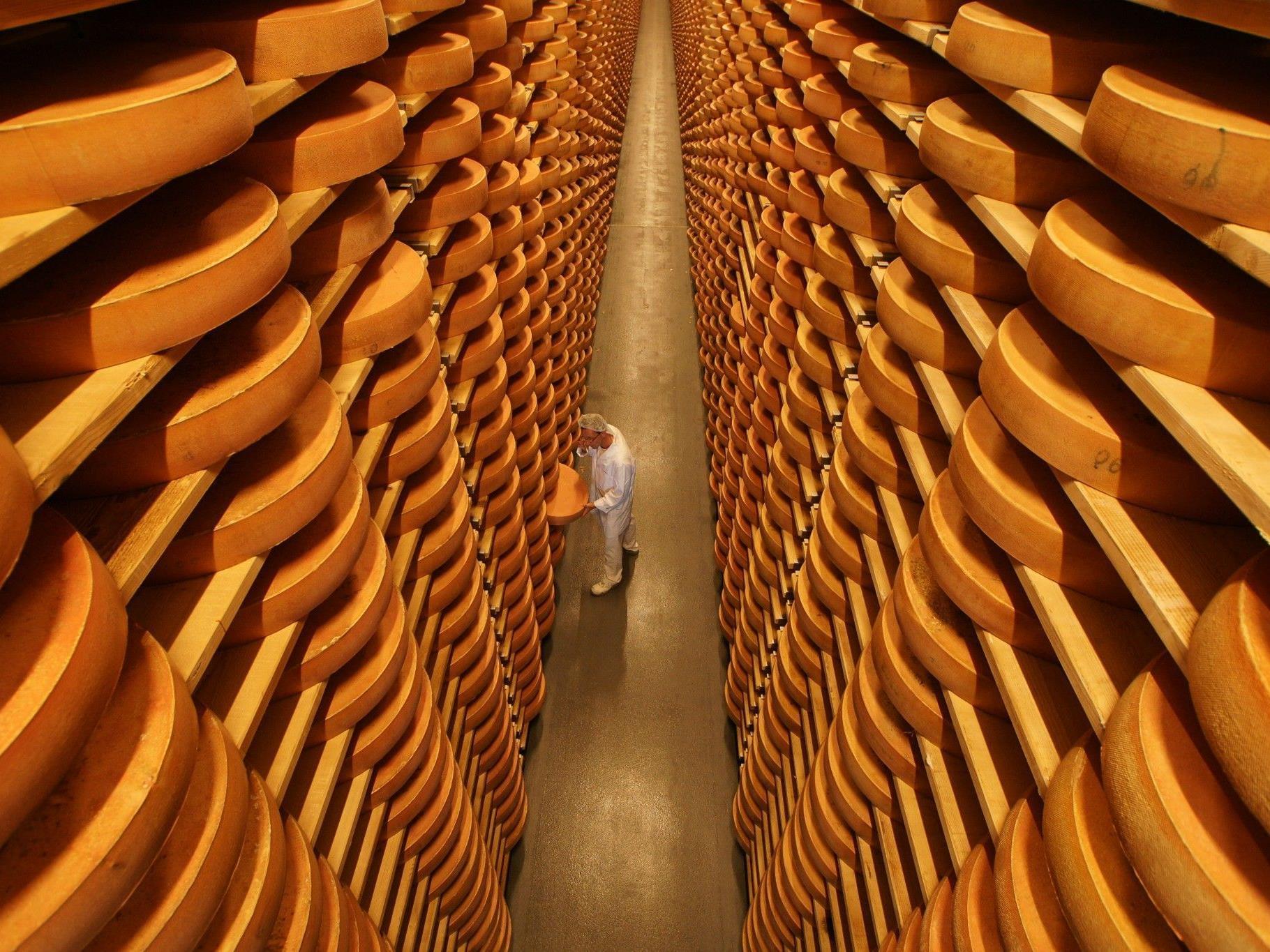 Ist Überdüngung schuld an den Qualitätsproblemen des Bregenzerwälder Käse?