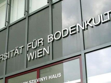 Die Studenten der Wiener BOKU stimmen in den nächsten Tag über ihre Ferien ab.