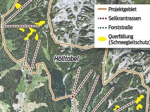 Geplantes Schutzwaldprojekt im Klostertal