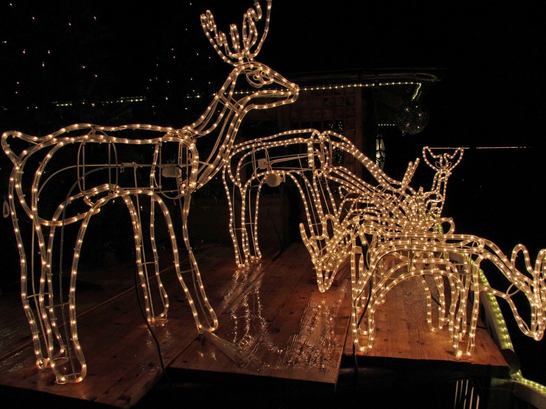 Weihnachtsbeleuchtung von Elmar Wieland in Rankweil