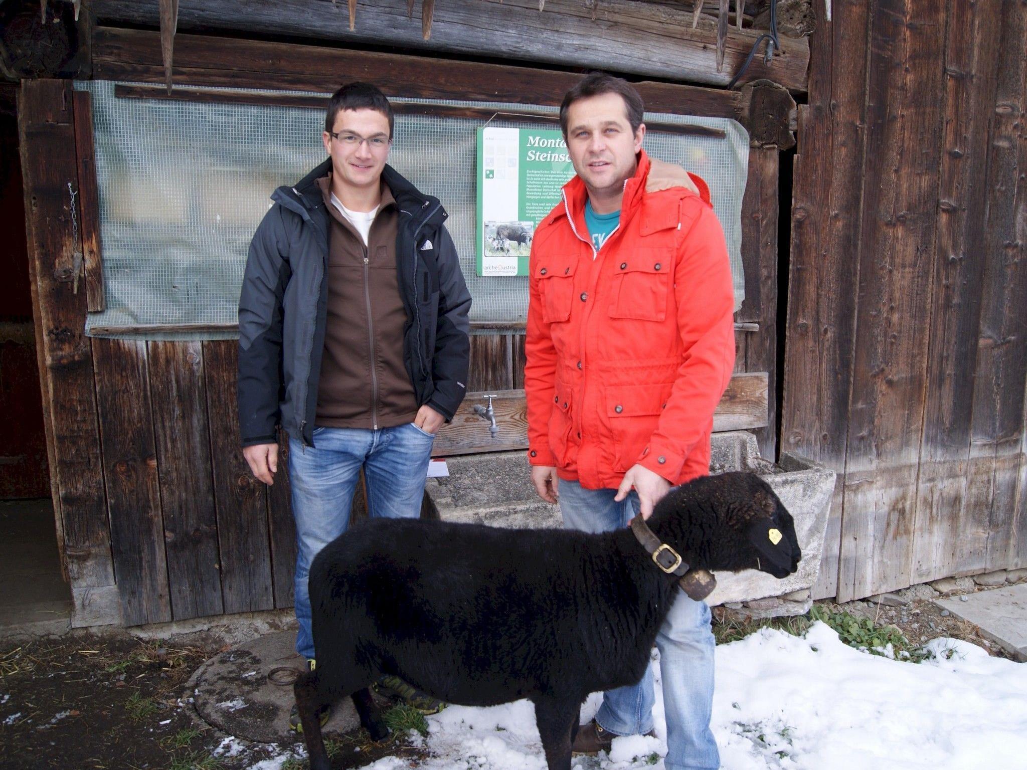 Martin Mathies (l.) und Peter Kasper mit einem Montafoner Steinschaf.