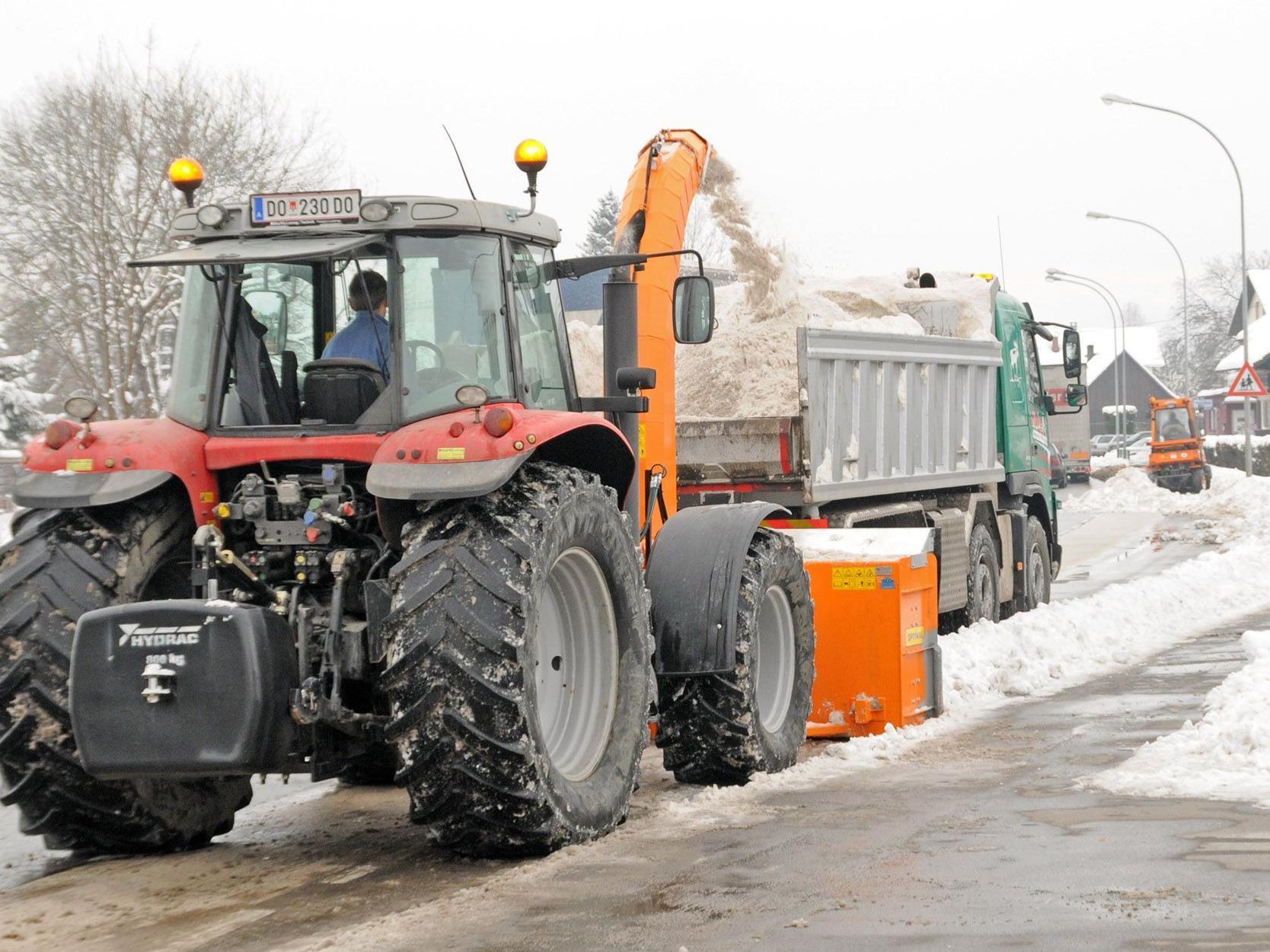 Mit Schneefräsen, Pflügen und Lastwagen wird der Schnee von der L202 in Fußach geräumt.