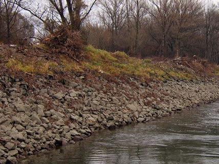 Die Einleitung von verunreinigtem Grundwasser in die Donau sei unbedenklich, heißt es.