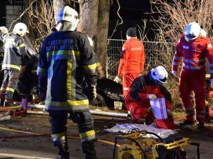 Der Lenker wurde bei dem Frontalzusammenstoß mit einem Baum schwer verletzt.