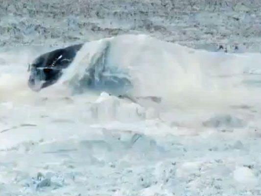 Gewaltige Kräfte schieben das Eis meterweit in die Luft.