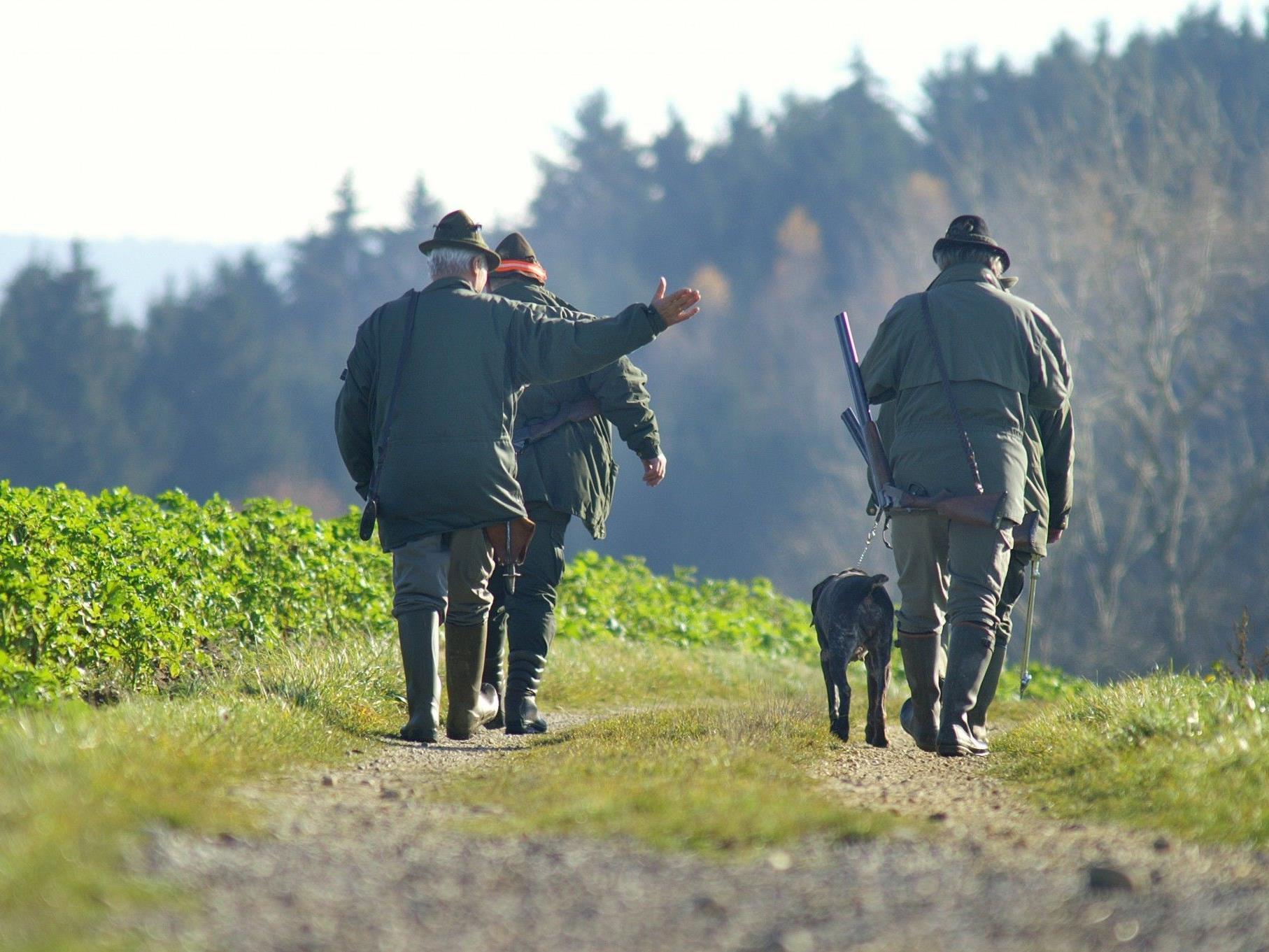 Der Tierschutzverein fordert eine 0,0-Promille-Grenze bei der Jagd.