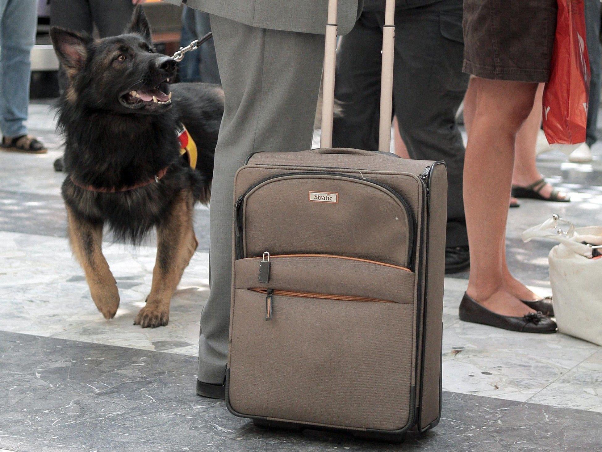 Kind in Koffer illegal von Griechenland nach Italien geschleust.