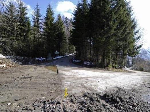 Der Tatort im Gemeindegebiet von Wiesing in Tirol - © APA/ Parigger