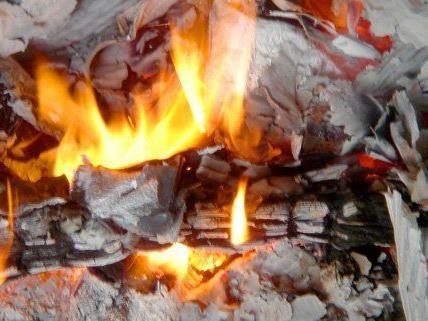 Ein Müllcontainer fing in Niederösterreich Feuer - Polizisten löschten