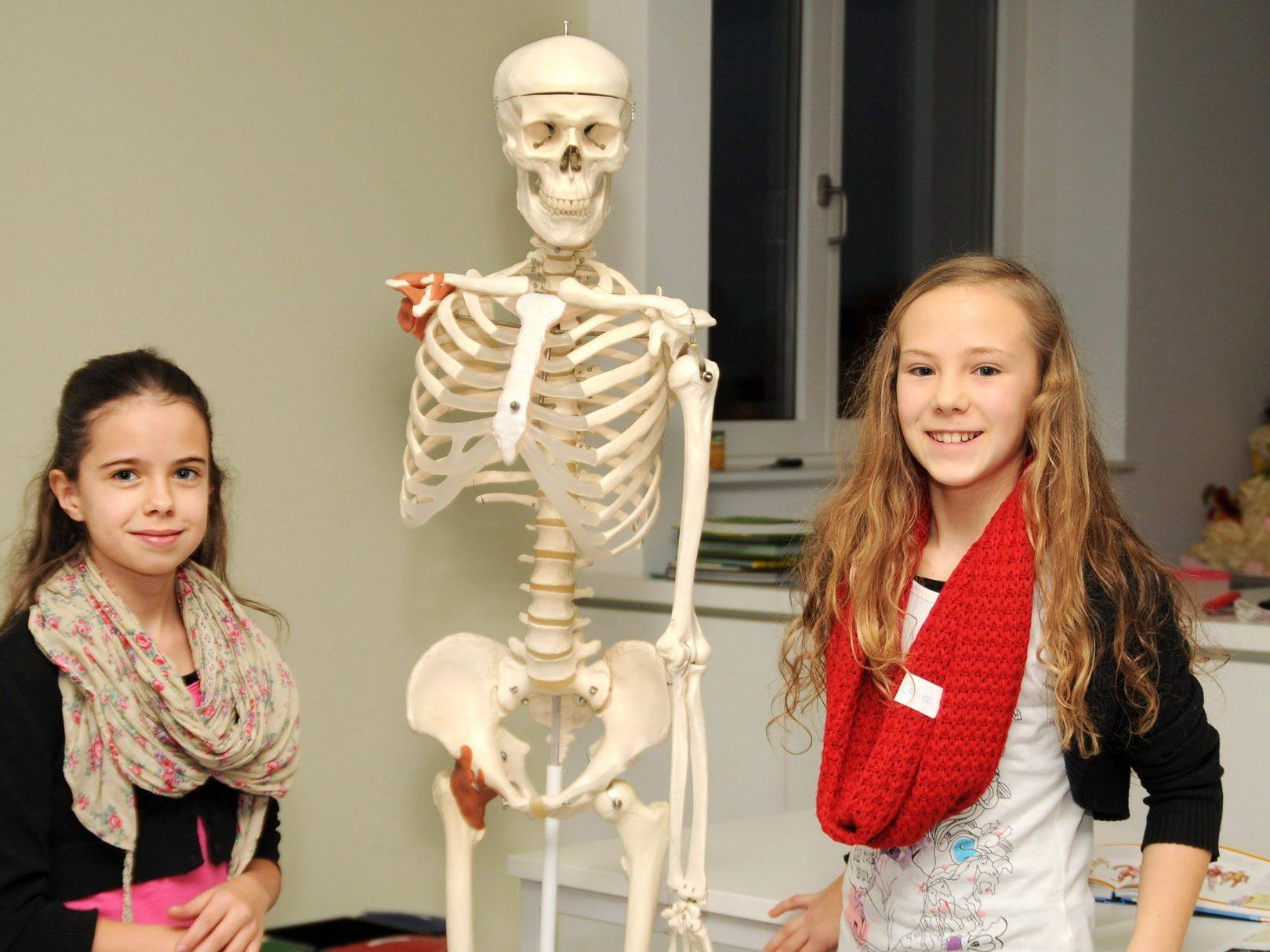 Lea und Celine mit dem Skelett aus dem Biologiesaal der Vorarlberger Mittelschule Höchst