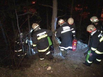 22 Feuerwehren waren in der Silvesternacht im Bezirk Neunkirchen im Einsatz.