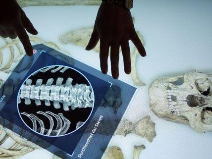 """Der """"CSI-Tisch"""" gilt als Highlight der neuen Anthropologie-Säle."""