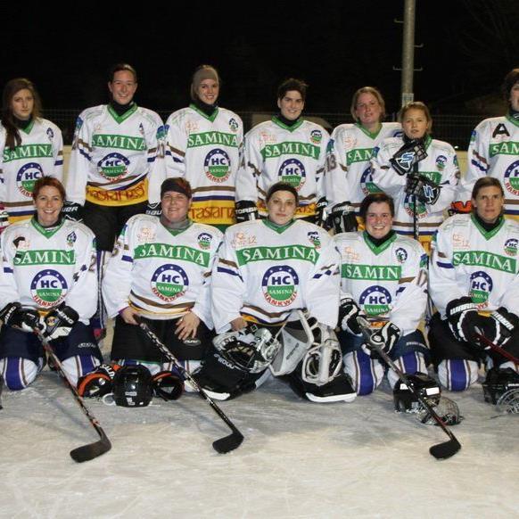 Die Frauenmannschaft des HC Samina Rankweil ist zum Zuschauen verdonnert.