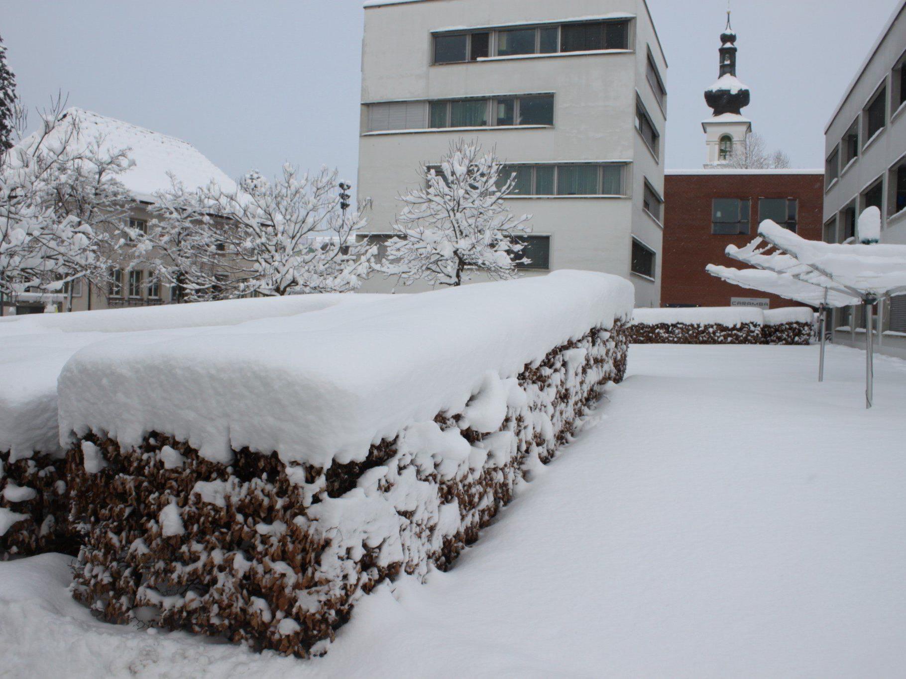 Winterimpressionen aus Lochau am Bodensee.