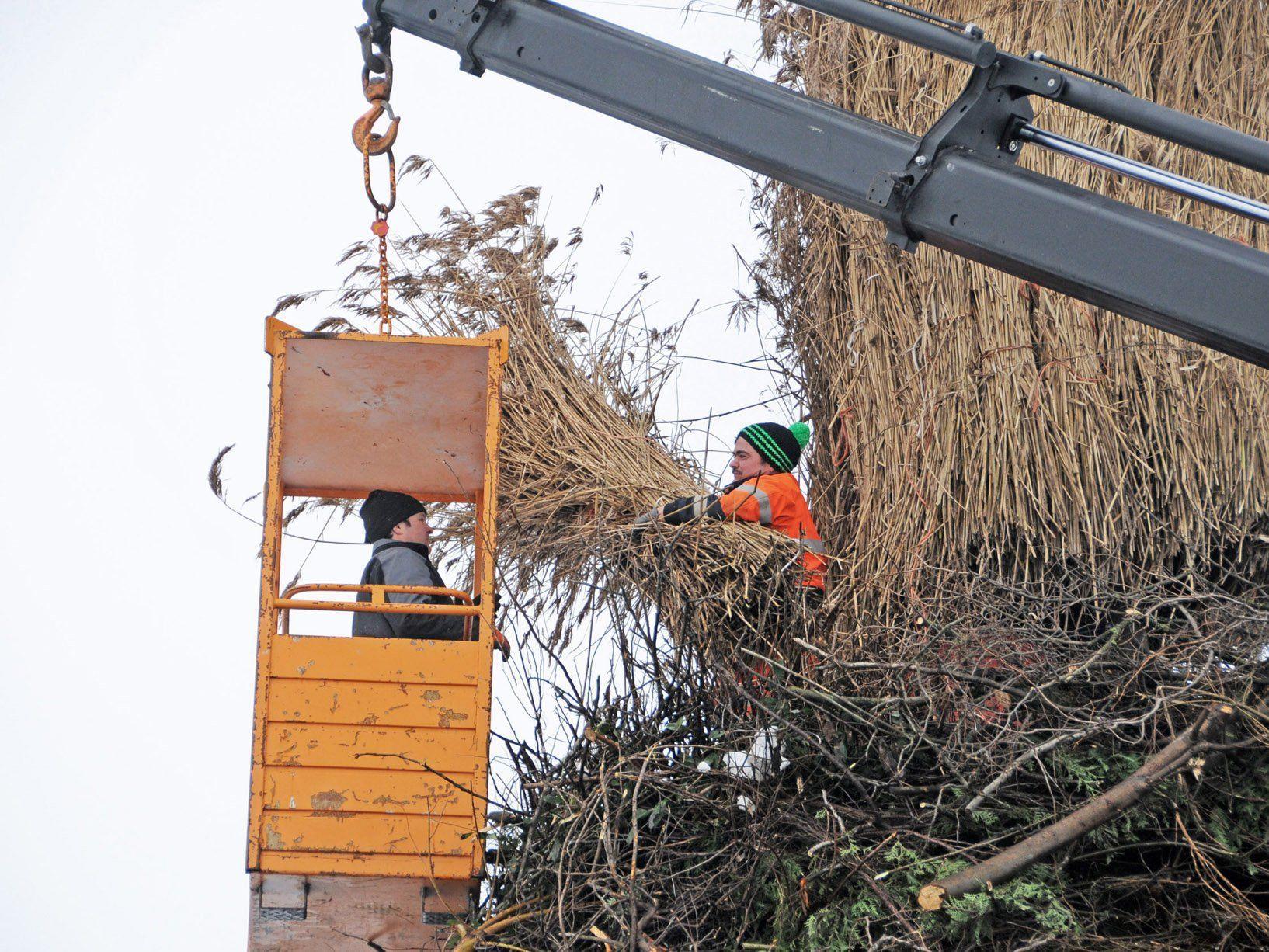 Viel Einsatz beim Bau des Dorfer Funkens in Höchst, der ebenfalls am Sonntag angezündet wird.